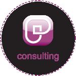 linie biznesowe-consulting